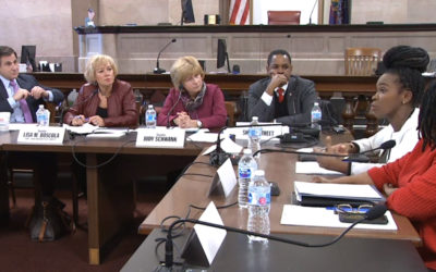 State Senate Committee Discusses Ways to Prevent Street Harassment
