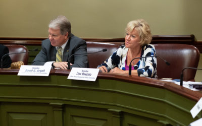 Joint, Bipartisan Senate Committees Discuss Possible School District Consolidation